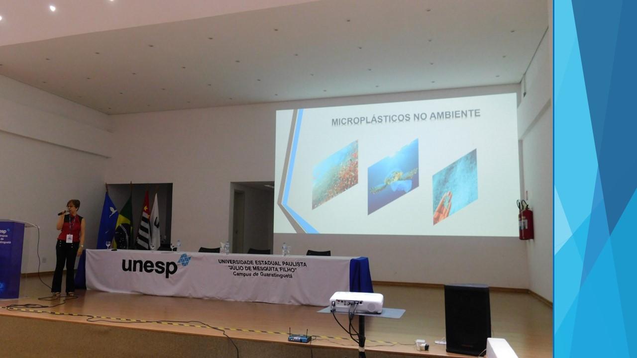 Professora da FT ministra palestra no V Workshop de Engenharia de Materiais da UNESP